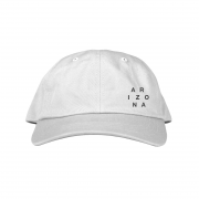 Logo Dad Hat (White)