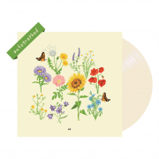 'we' signed vinyl