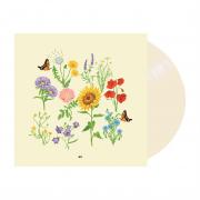 'we' vinyl