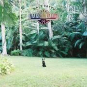 Rainbow Valley Vinyl